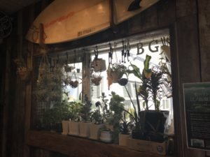 自由が丘,パームスカフェ,Palms cafe,ランチ,カフェ