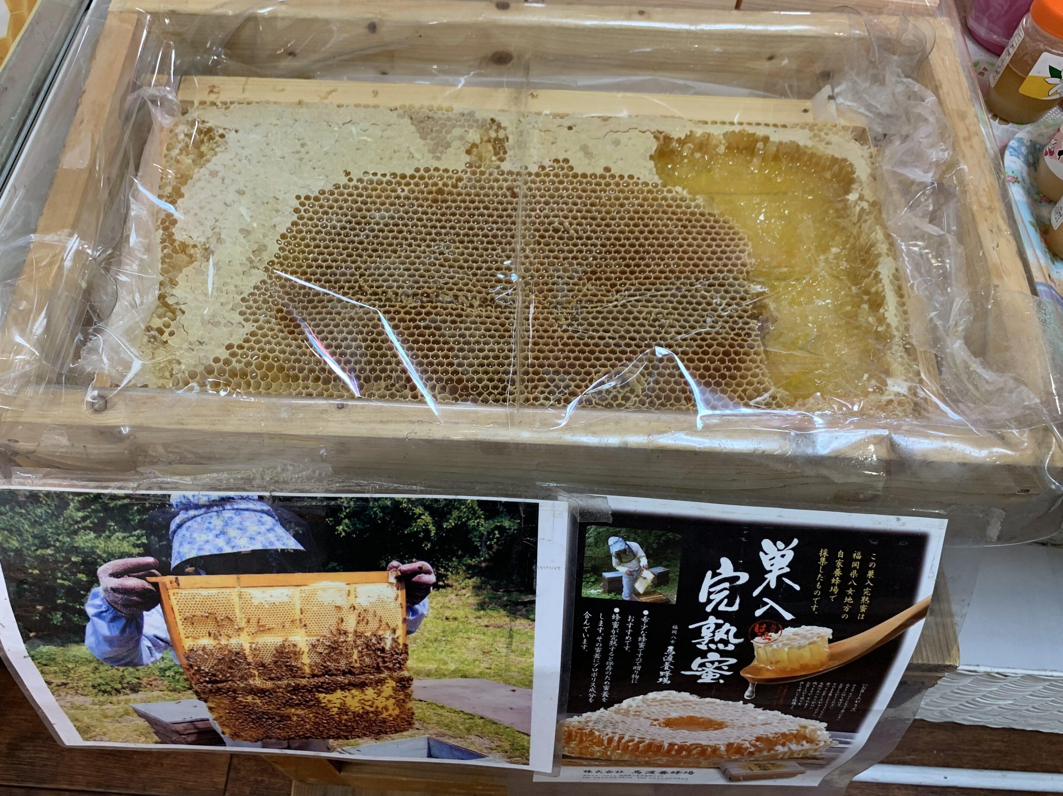 馬渡養蜂場,自由が丘,自由が丘デパート,蜂蜜,ハチミツ,八女