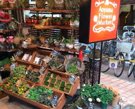 青山フラワーマーケット,自由が丘,フレルウィズ自由が丘,花屋,花,フラワーショップ
