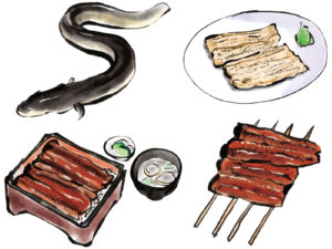 ほさかや,自由が丘,うなぎ,鰻,eel,串焼き,居酒屋,ランチ,テイクアウト